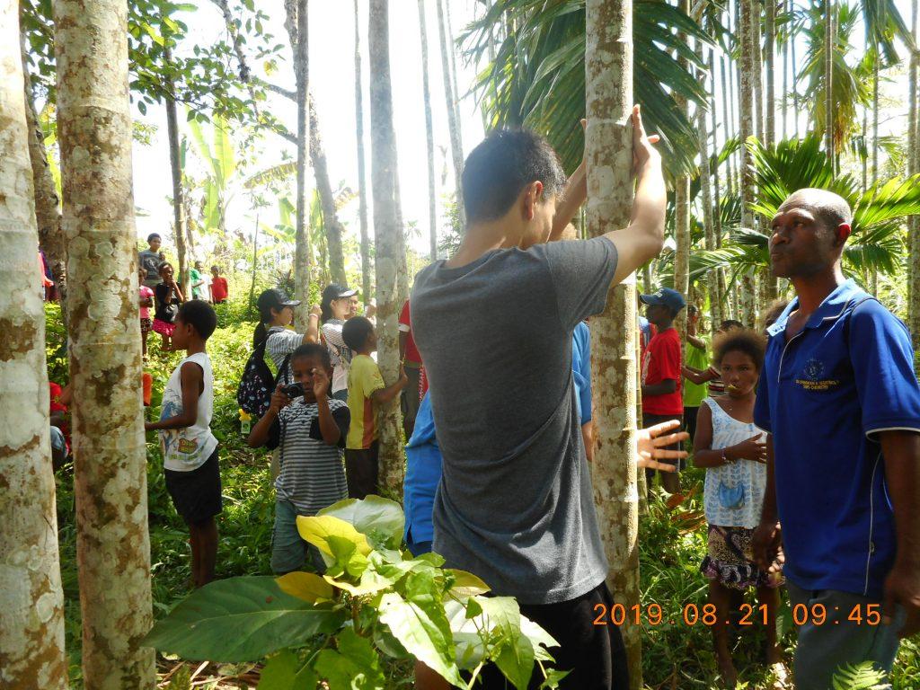パプアニューギニア4日目:バナナの木に登る