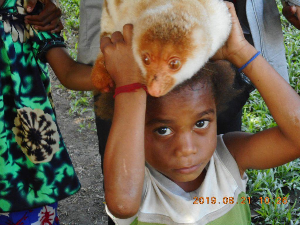 パプアニューギニア4日目:クスクス