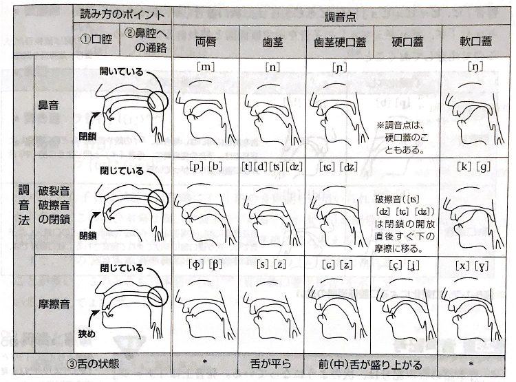 口腔断面図での調音点・調音法