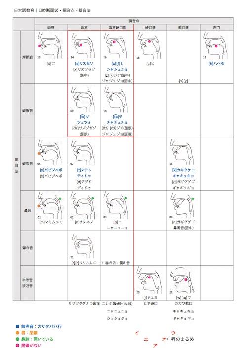 日本語教育能力検定試験:口腔断面図・調音点・調音法・50音